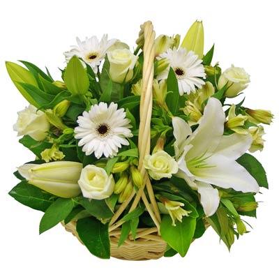 Chúc mừng sinh nhật Mr Andy - TGĐ Trần Anh Giang