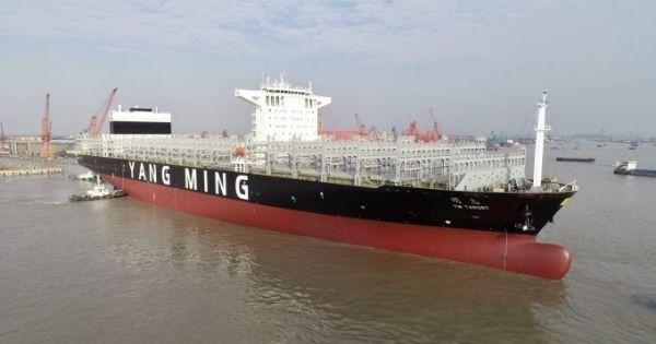 Yang Ming triển khai thêm tàu mới 11.000TEU trên tuyến xuyên Thái Bình Dương